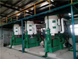 machine extraction huile olive import export machine
